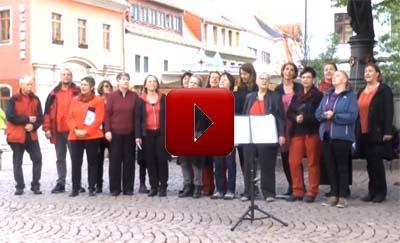 Video Meissen
